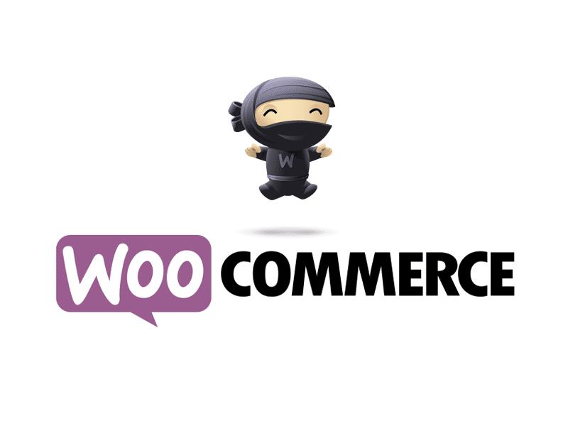 elodie web design creation site internet webmaster cannes webdesign woocommerce